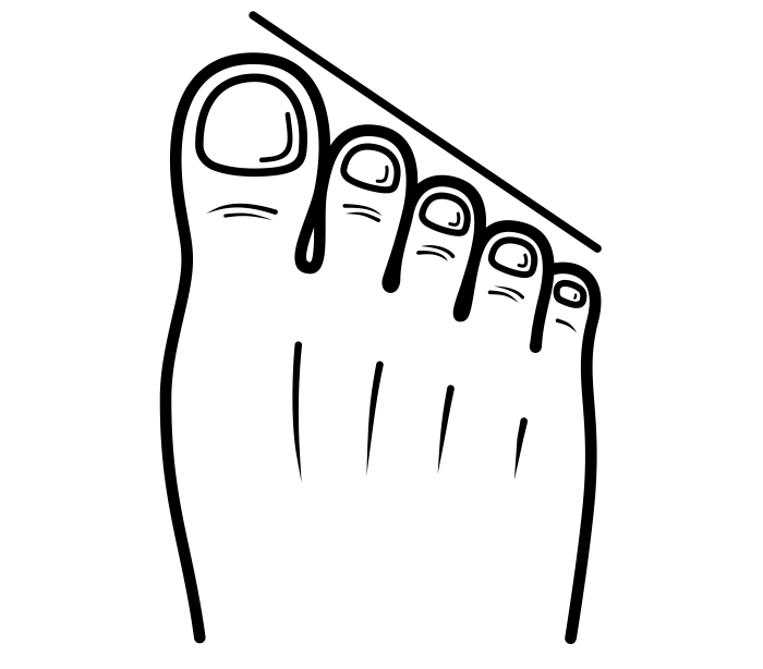 G:\Pics Sharing\noun_Stretched Egyptian Foot_1786288.png