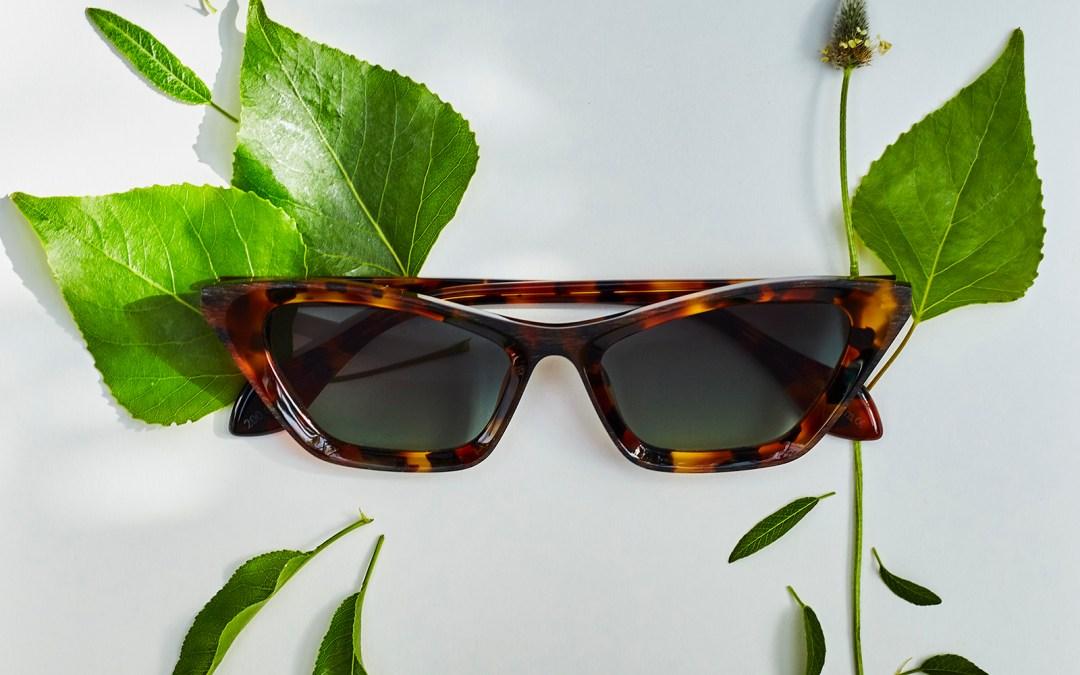 Descubre la colección HAVANA de Theo Eyewear de edición limitada en La Gafería