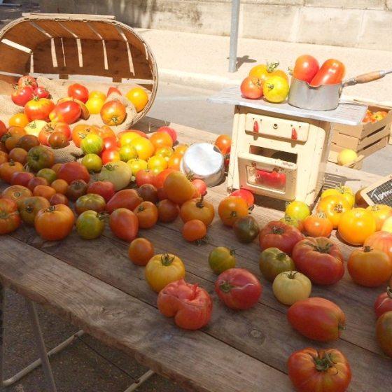 gastronomia, cocina francesa, gastronomia de la provenza, francia, vacaciones en francia, guia gastronomica de  la provenza, verano en francia, Aigues-Mortes