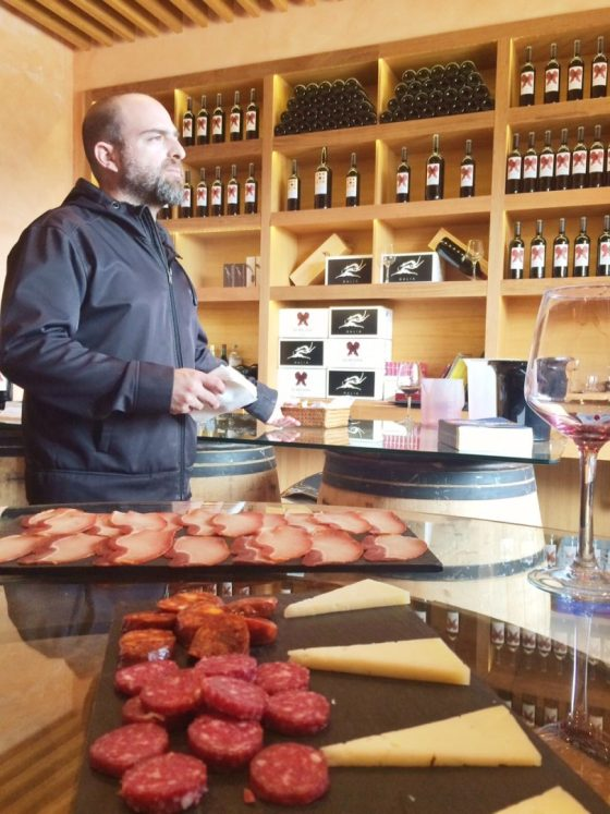 enoturismo, rutas de vino, vinos de madrid, visita bodega, bodega el regajal, tienda vinos