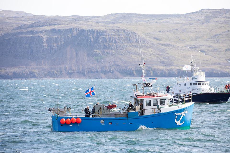 Un producto para tu restaurante: bacalao de Islandia