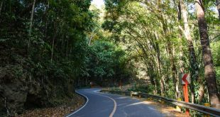 Camino a Cebu