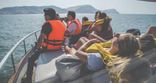 Nadar con lobos marinos en Peru