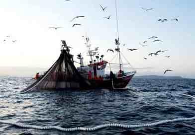 Calendario fermo pesca 2018 | Ecco il decreto ministeriale, la durata e i periodi in tutta Italia