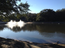 It's obviously an artificial lake but there are few natural lakes in Texas.