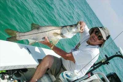Snook Fishing Sebastian Inlet