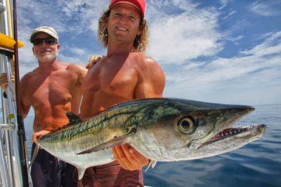Deep Sea King Mackerl