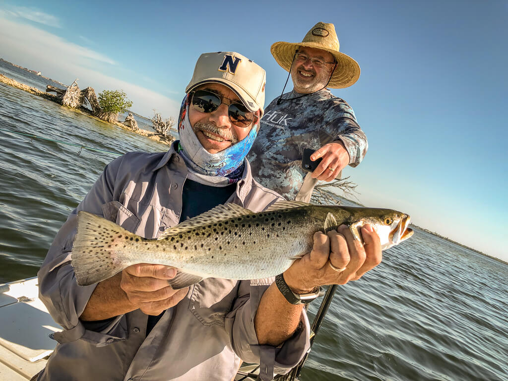 spotted sea trout