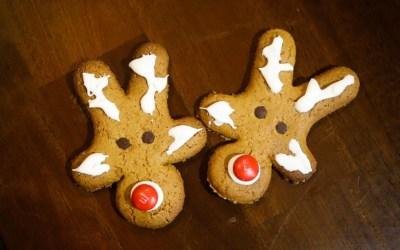 GF/DF Gingerbread