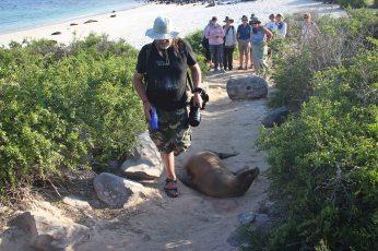 ...but did not bother when we met ashore