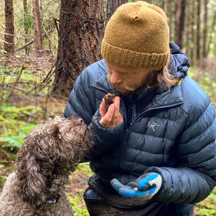 Amico Roma Puppies' breeder Kevin smelling a white oregon truffle that his lagotto lea found while truffle hunting in the northwest oregon forest. Kevin is wearing a blue arc'teryx jacket and yellow hat looking bundled
