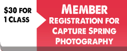 capture-spring-member-registrations-button