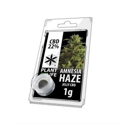 Amnesia Haze Jelly 22% cbd 1g