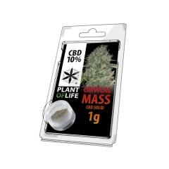 Critical mass resine 1g