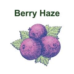 Berry Haze