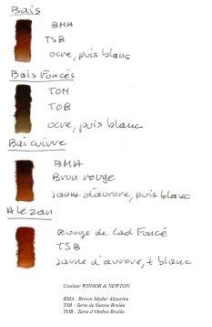 Robes-des-chevaux-3