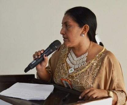 La directora distrital de Asuntos Indígenas, Ketty Pushaina,  participando de la reunión con miembros del Gobierno Nacional y Departamental.