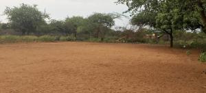Esta es la cancha de fútbol donde los menores y adultos juegan.