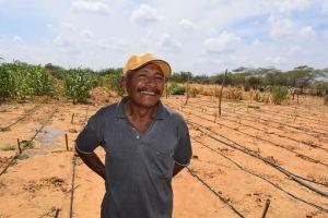 Las labores de siembra de huertas comunitarias, jornadas de limpieza, ornato y embellecimiento, mejoramiento del hato ovino caprino, entre otras.