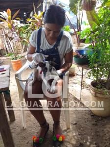 Los caninos reciben atención y cuido de parte de Yuritza Yased Bolívar Fernández.