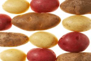 proveedores-hostelería-patatas-restauración-horeca