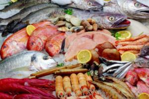 proveedores-hostelería-pescado-marisco-restauración-horeca