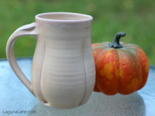 Homemade Pumpkin Coffee Creamer - Know What's In Your Coffee! | Laguna Lane