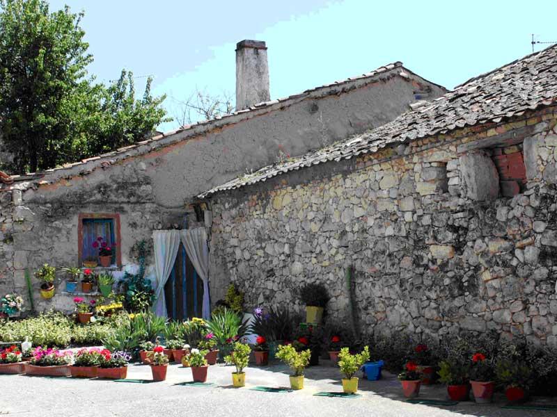nuevo estilo jardin rural chic la habitaci n verde