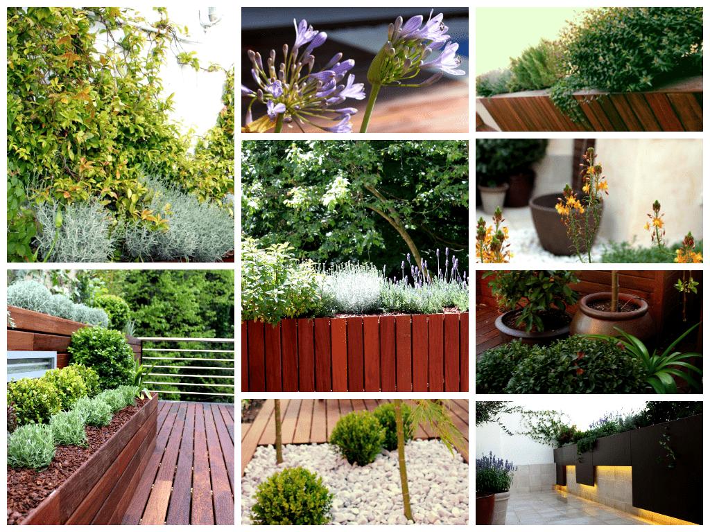 Para qu sirve un paisajista la habitaci n verde Ideas paisajismo jardines
