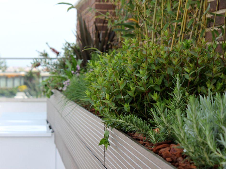 Casos de xito jard n en terraza la habitaci n verde for Definicion de terraza