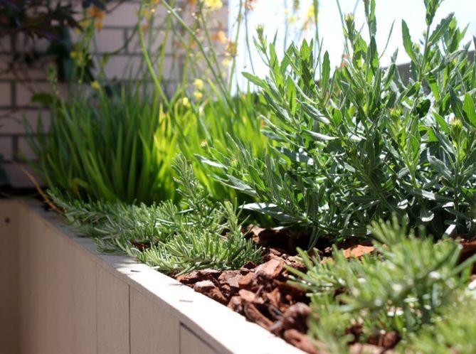 Jardín en terraza en ensanche Vallecas Madrid