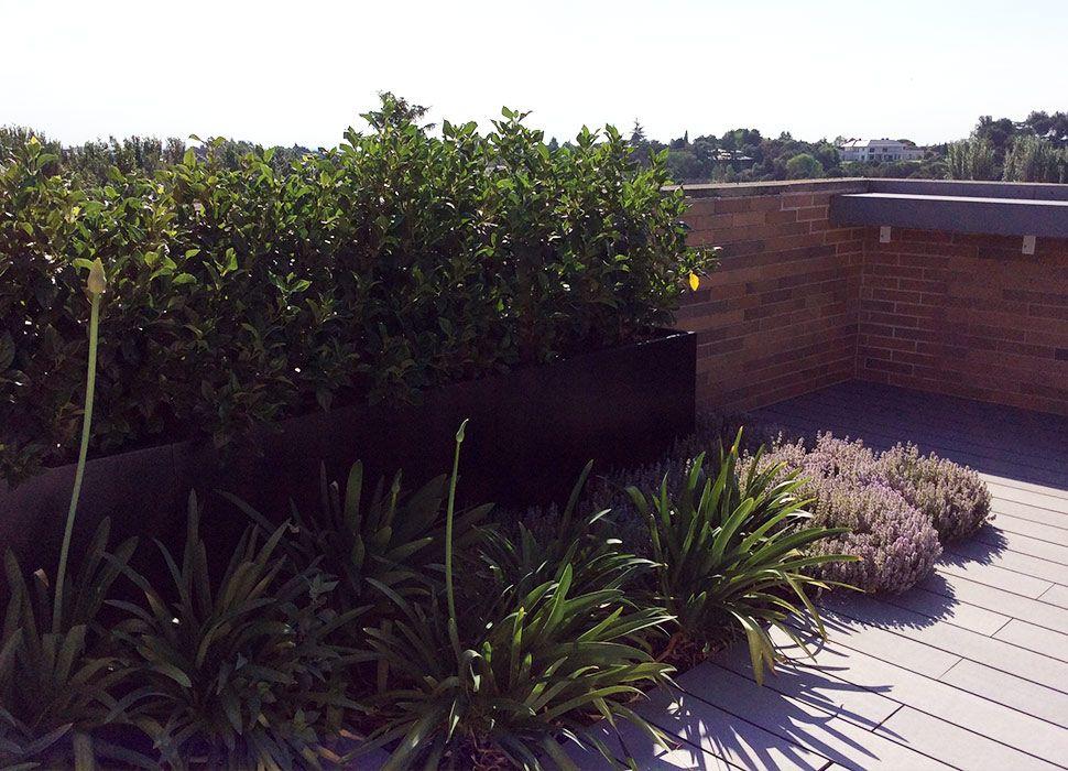 Terraza con jardín en La Moraleja