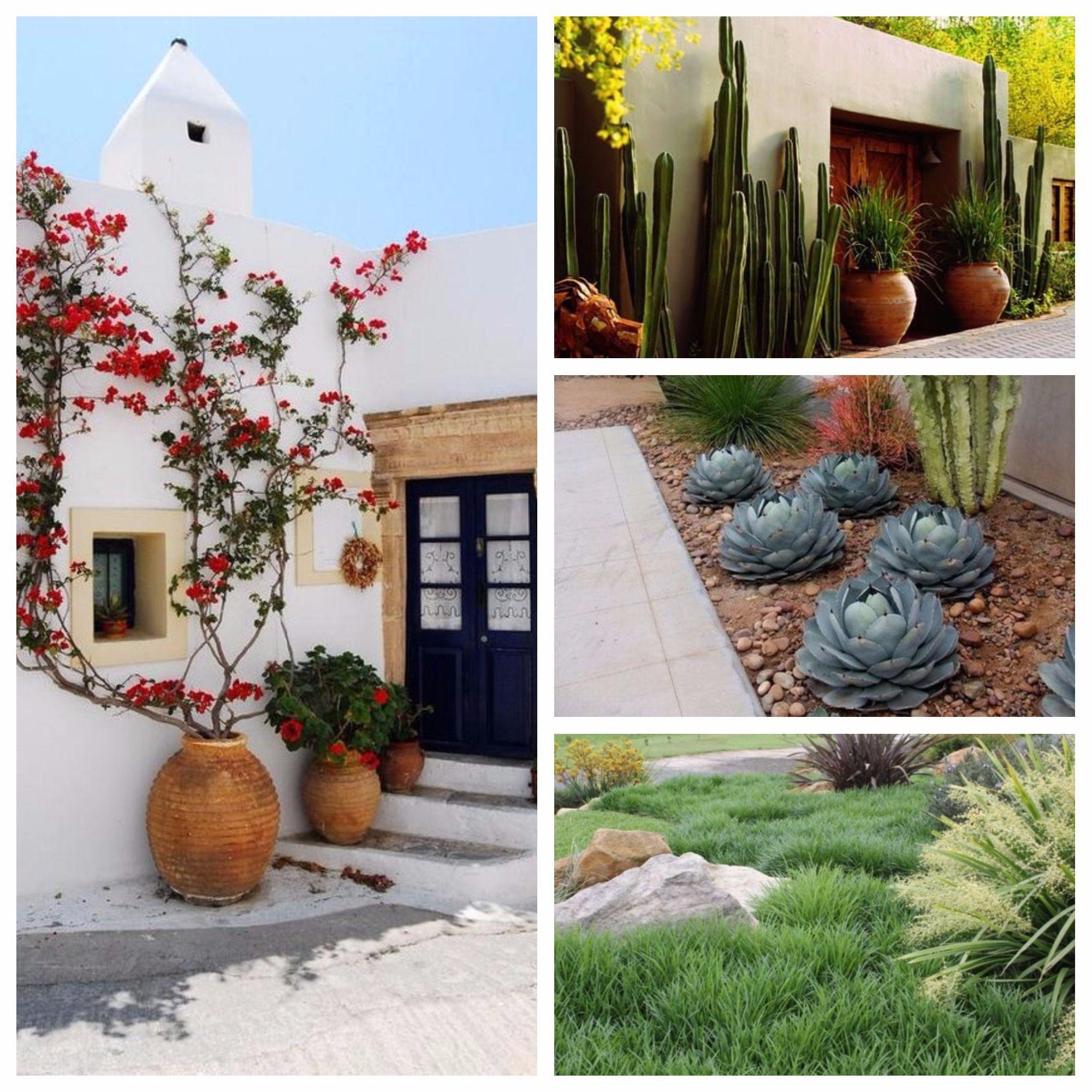 Ideas para jardines sin c sped la habitaci n verde Diseno de jardines pequenos sin cesped