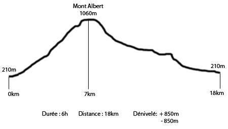 Parc de Gaspésie - Profil du Mont Albert