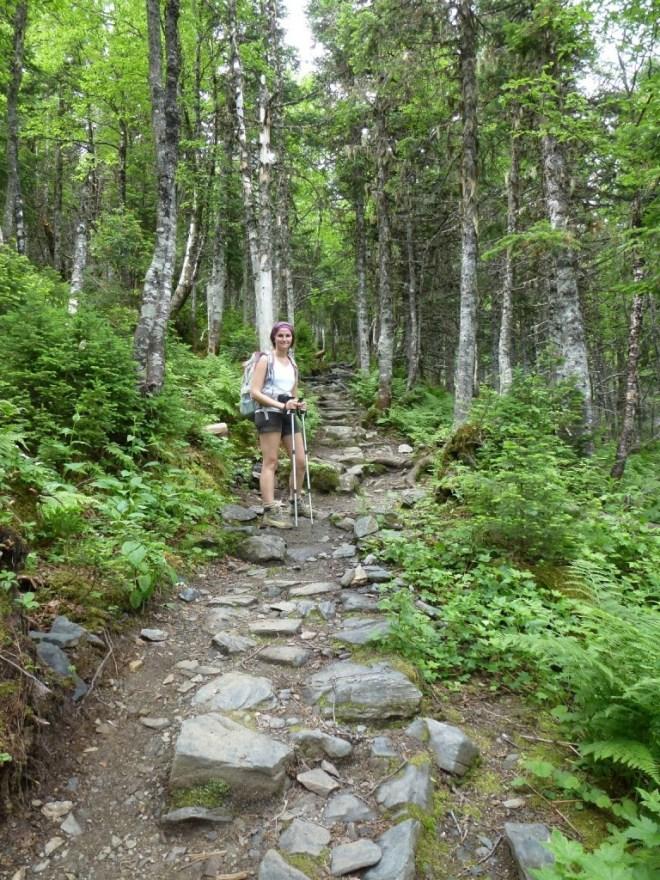Parc de Gaspésie - Montée au Mont Albert