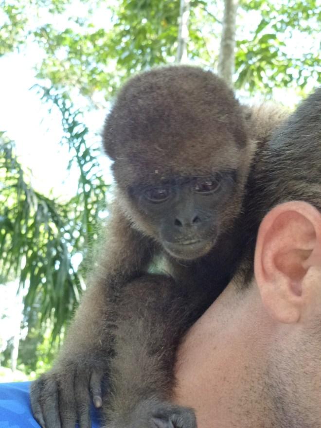Paseo Los Monos