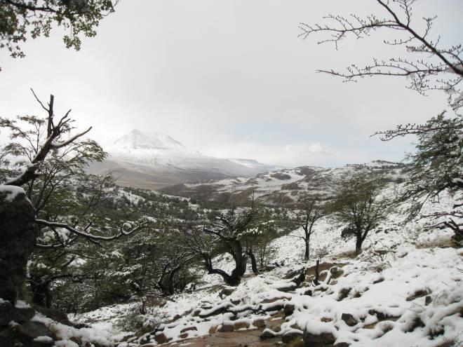 Laguna Torre, El Chaltén - Patagonie