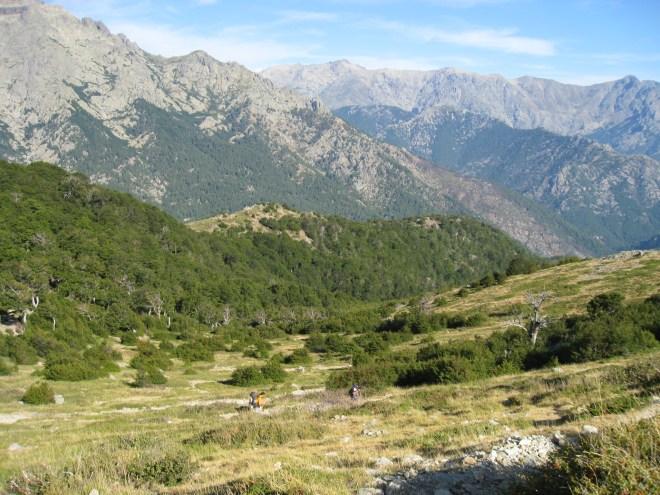 Vizzavona - Bocca Palmente - GR20