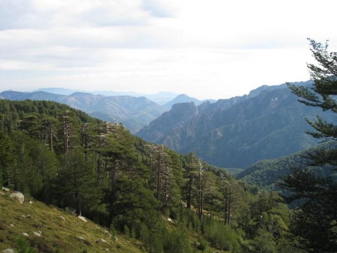 E Capannelle - Bocca di Verde - GR20