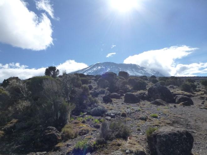 Vue sur le Kili