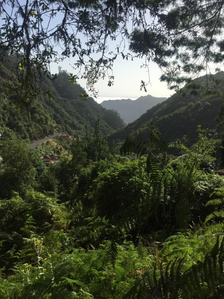 vallée Ribeiro Frio Madère
