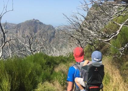 Pico Ruivo ou le sommet des roux