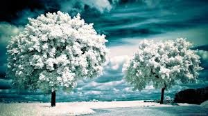infrared snow effect