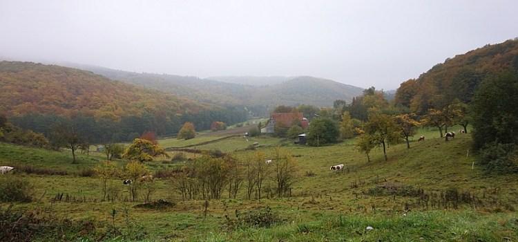 Lahnwanderweg Etappe 4: Biedenkopf – Buchenau