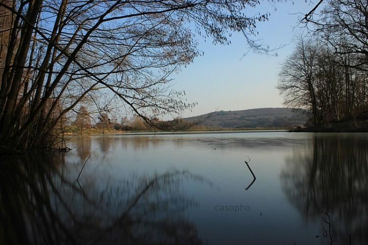 Der Waldsee bei Probbach