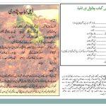 Chapli Kabab Recipe In Urdu Peshawari Chapli Recipe Method Step By Step