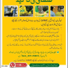 Lahore Waste Management Company Contact, Helpline, Address, Whatsapp