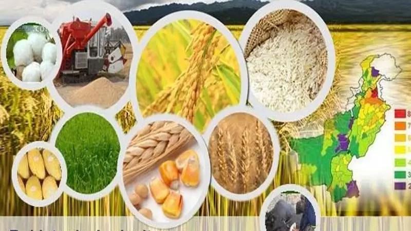 Punjab-Agriculture-Department