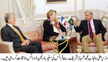 French Ambassador Martine Dorance held a farewell meeting with CM Punjab
