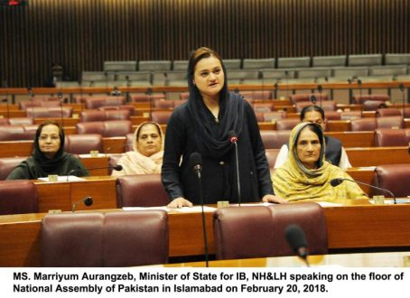 The insult of parliament by any state institution is acceptable : Maryam Aurangzeb